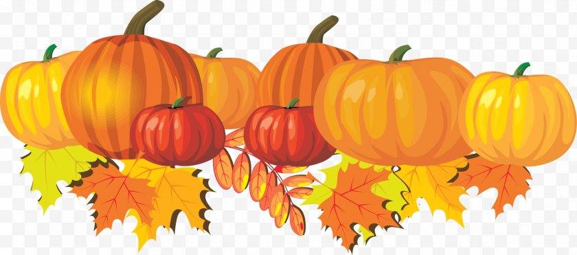 Jackolantern - Pumpkin Pie Autumn Snickerdoodle Clip Art - Halloween - Mums Cliparts Free PNG
