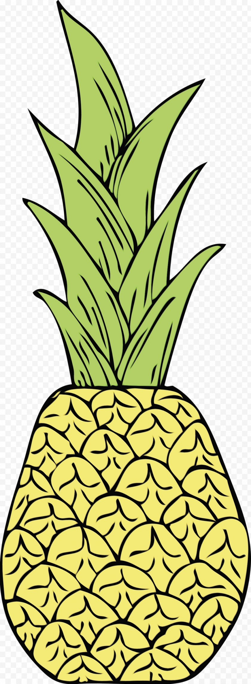 Watercolor - Pineapple - Plant - Fruit Houseplant Free PNG