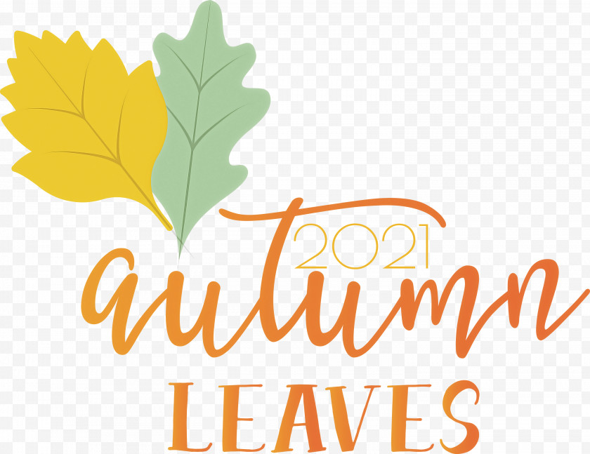 Autumn Leaves Autumn Fall Free PNG