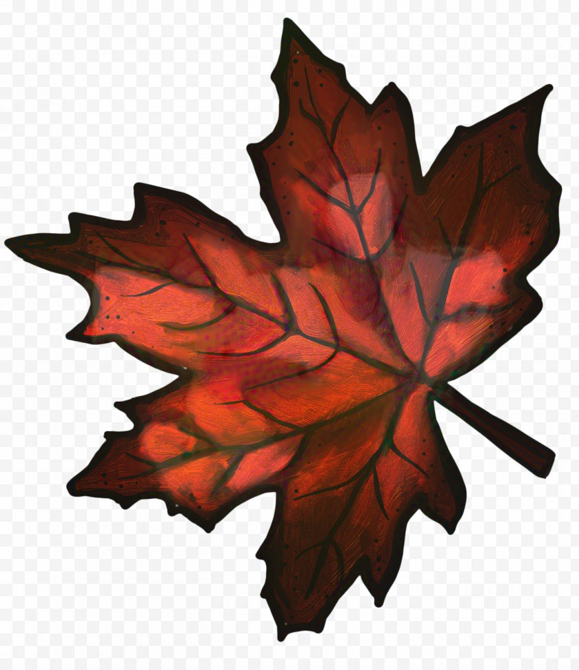 Autumn Leaves Set - Background - Maple Leaf - Silver Planetree Family Free PNG