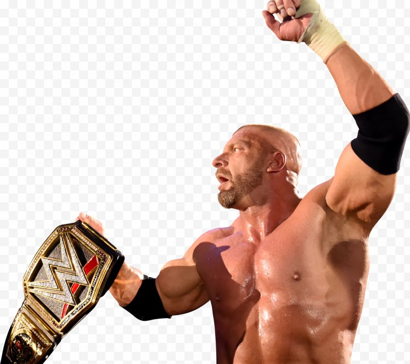 Frame - Boxing Glove Thumb Pradal Serey Hand - Tree - Triple H Free PNG