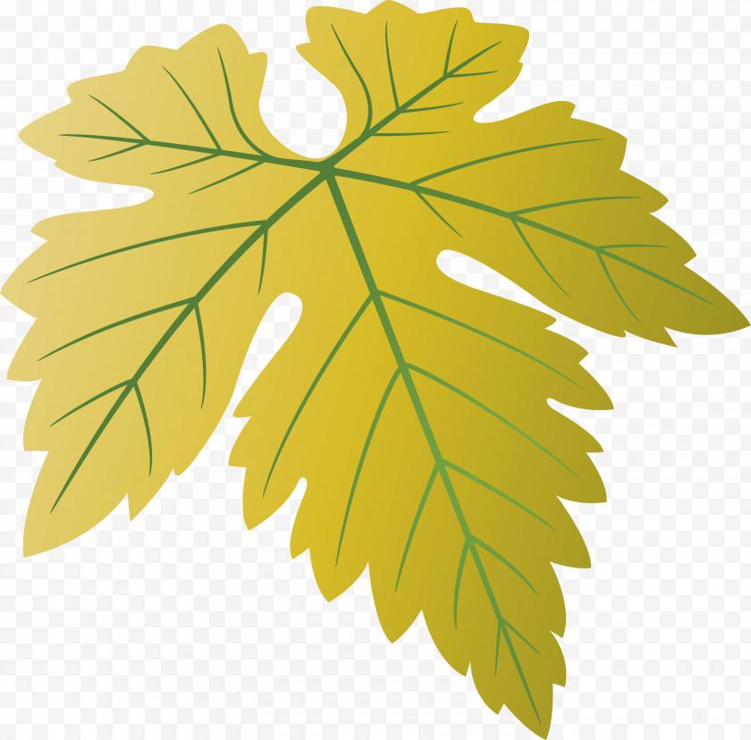 Grapes Leaf Leaf Free PNG
