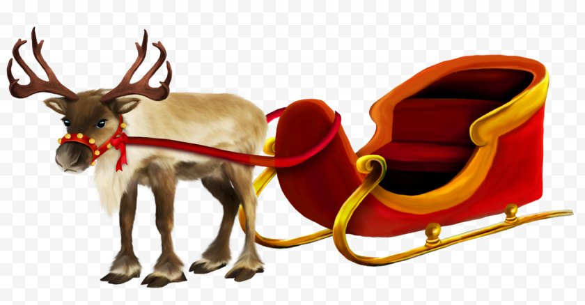Santa Claus S Reindeer - Rudolph The Red-Nosed - Antler - Christmas And Sleigh Picture Free PNG
