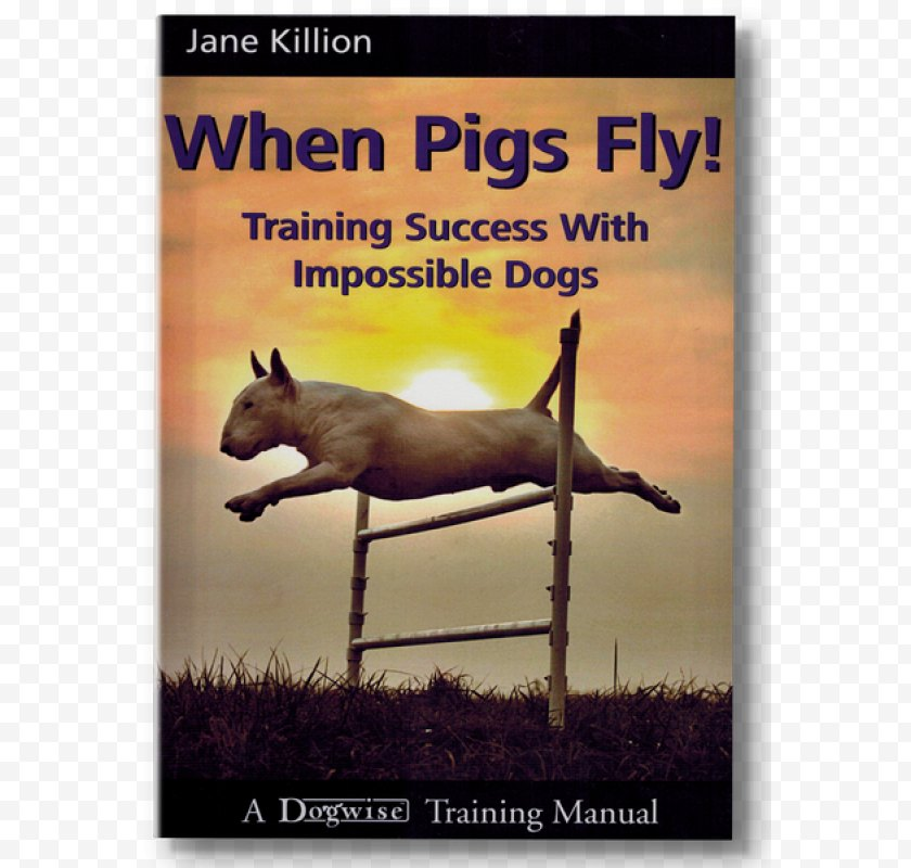 Clicker Training - When Pigs Fly! Success With Impossible Dogs Amazon.com Do Over Dogs: Give Your Dog A Second Chance For First Class Life - Wildlife - Belt Massage Free PNG